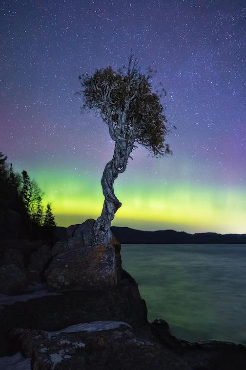 The Spirit Tree and the Northern Lights by John Keefover.