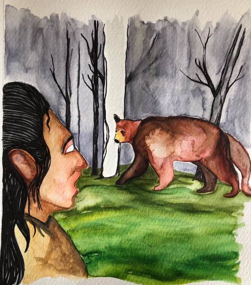 One of the Illustrations by Sam Zimmerman for a children's book in English and Ojiwemowin. This one shows Nanaboozhoo talking to a makwa.