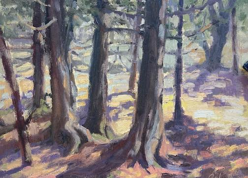 Every group of cedars has its own story to tell . Painting by David Gilsvik.