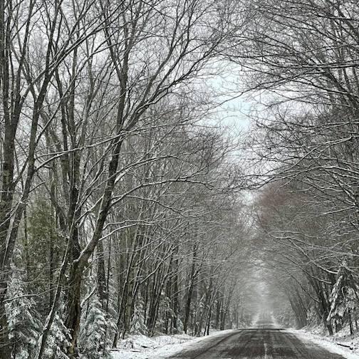 Morning drive by Kristofer Bowman.