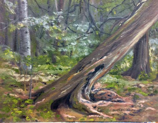 "Cascade Cedars by Sandi Pillsbury is one of her paintings in the plein air exhibition ""Happy Trails."""