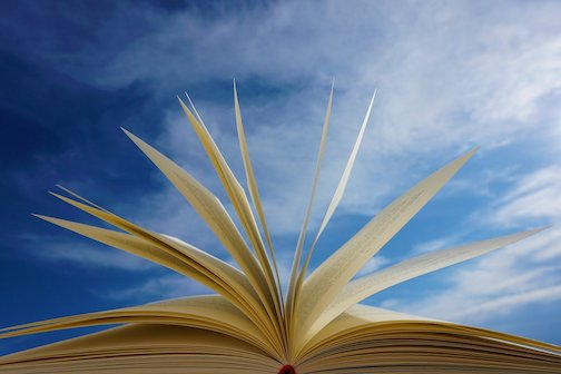 Library Friends will hold a Pop-Up Used Book Sale on Saturday, June 26, from 10 a.m. to 2 p.m. in the backyard of Joy & C