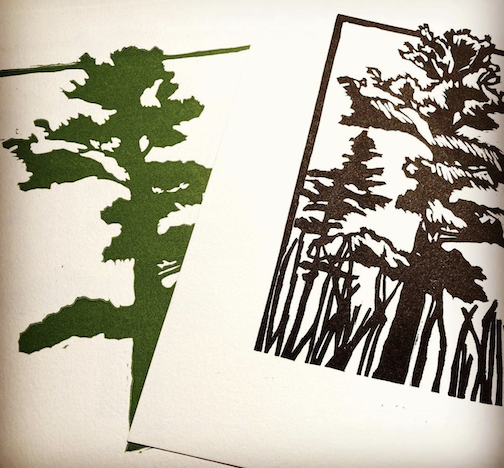And in other news, Trees are getting somewhere. By Betsy Bowen.