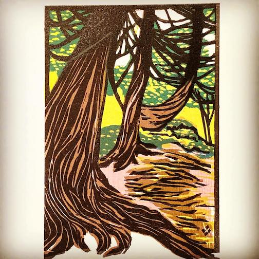 Cedars on the River, woodcut print by Betsy Bowen. The first in her tree series.