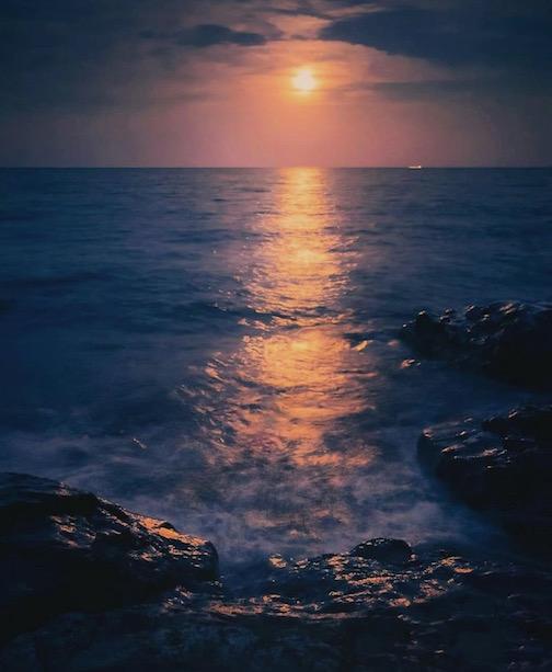 Harvest Moon by Dominic Ricci.
