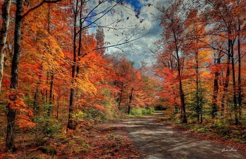 Honeymoon Trail by John Heino.