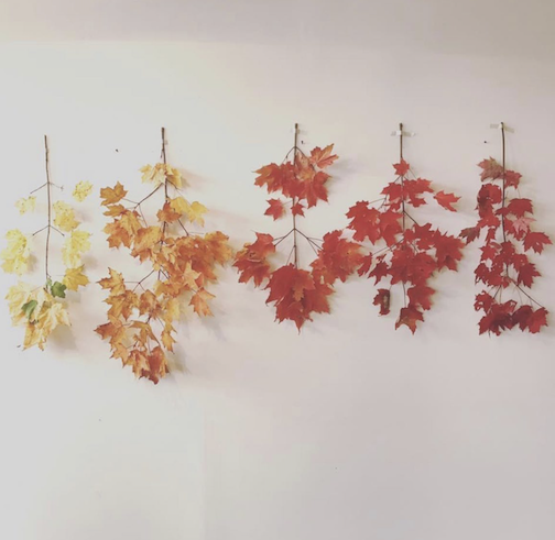 Just the very gentle beginnings of a long autumn.