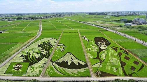 Turning Rice Paddies into Art. Click here to learn more.