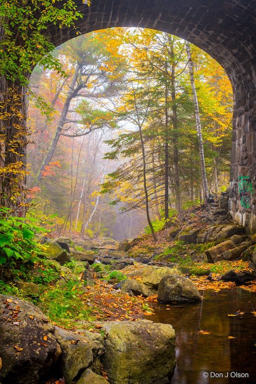 Chester Creek on a beautiful fall fay by Donald Jay Olson.